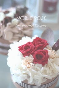 NOBLE ROSE