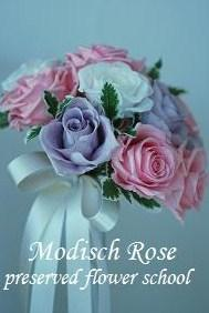 Modisch Rose